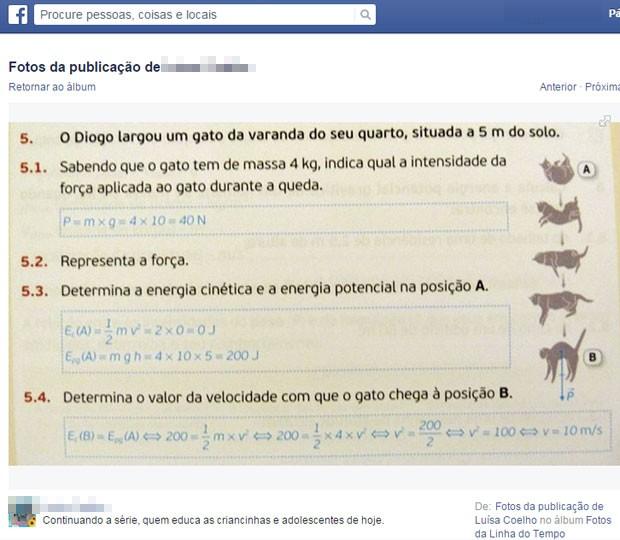Exercício de física usa exemplo garoto que joga gato da varanda; editora diz que vai mudar livro. (Foto: Reprodução/Facebook)