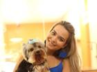 Cachorro de Geisy Arruda tem dia de beleza e procura 'namorada'