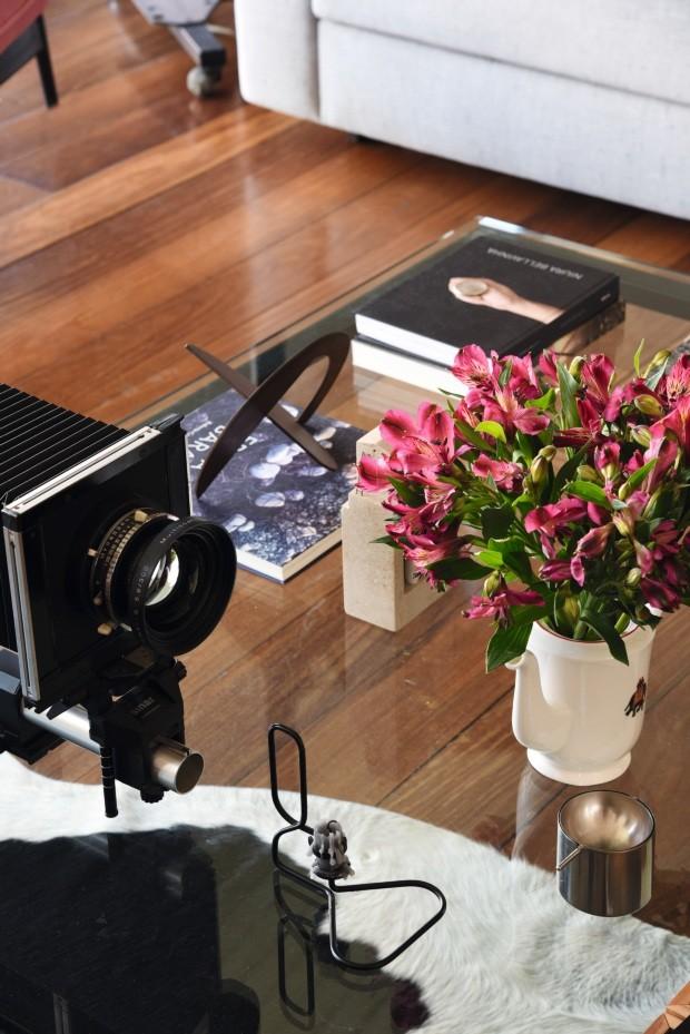 Detalhe. Livros de fotografia, pequenas esculturas, uma câmera antiga e um bule transformado em vaso decoram a mesa de centro (Foto: Rômulo Fialdini / Editora Globo)