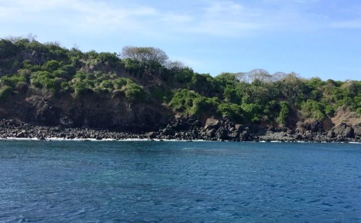Ilha Rata