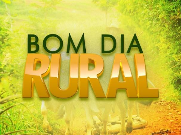 O Bom Dia Rural é exibido toda terça-feira pelo telejornal Bom Dia Santarém  (Foto: Tato Gomes/Editor de Arte TV Tapajós)