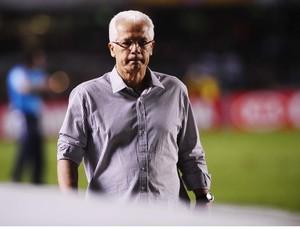 Emerson Leão técnico São Paulo (Foto: Marcos Ribolli / Globoesporte.com)