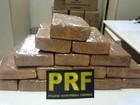 Jovem é preso com 15 tabletes de maconha na Via Dutra, em Itatiaia, RJ