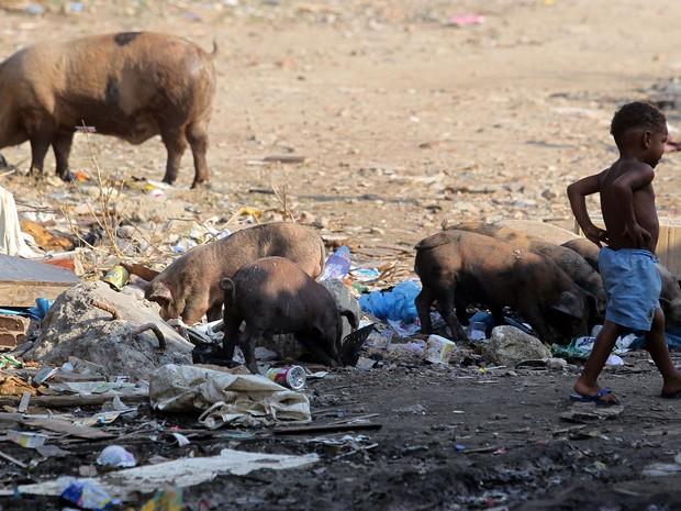 Crianças andam no meio do lixo e dos porcos (Foto: Marcos de Paula / G1)