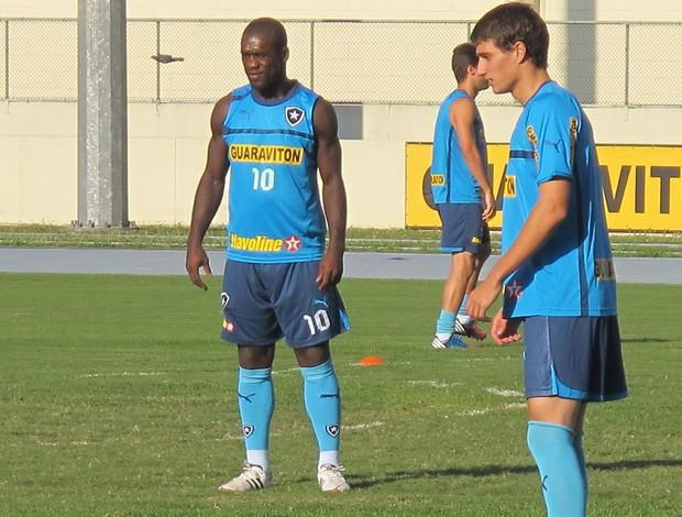 Tellechea e Seedorf, Botafogo (Foto: Thales Soares / Globoesporte.com)