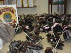 Voluntários entregam cinco armas por dia, em média, em Pernambuco