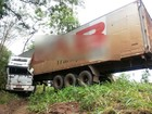 Caminhão derrapa na pista molhada e bate em árvores na BR-153