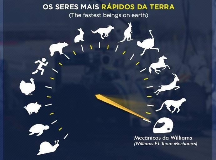 Felipe Massa tira onda com pit stop da Williams, o mais rápido da história da F1 (Foto: Divulgação)