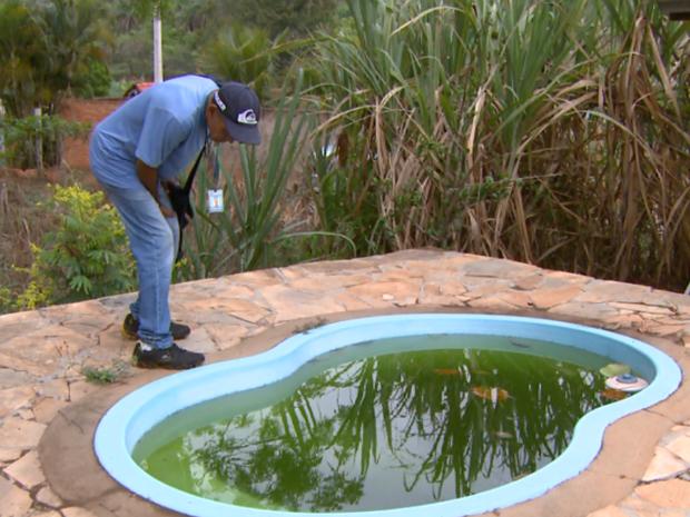 Água parada em piscina de chácara é possível criadouro de dengue (Foto: Eder Ribeiro/EPTV)