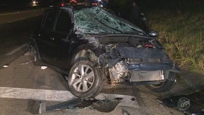 Animais na pista causam série de acidentes em rodovias de Campinas