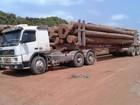 PRF apreende carga de madeira ilegal na rodovia BR-010, no Pará