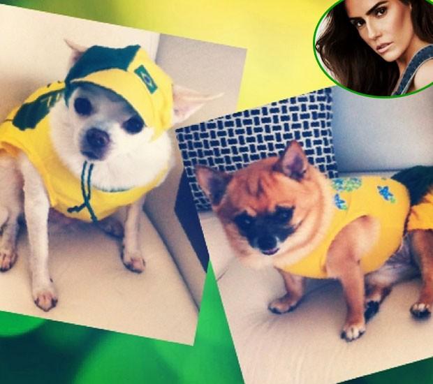 Deborah Secco caracterizou seus cães em ritmo de Copa (Foto: Reprodução/Instagram)