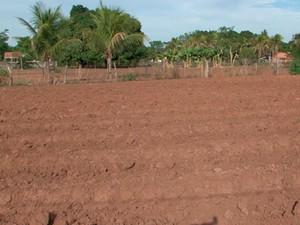 Seca na zona rural de Barreiras, Bahia (Foto: Reprodução/ TV Oeste)