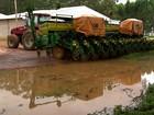 Chuva provoca atraso na colheita de soja em propriedades de Mato Grosso