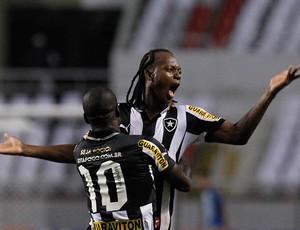 Seedorf e Andrezinho gol Botafogo (Foto: Wagner Meier / Ag. Estado)