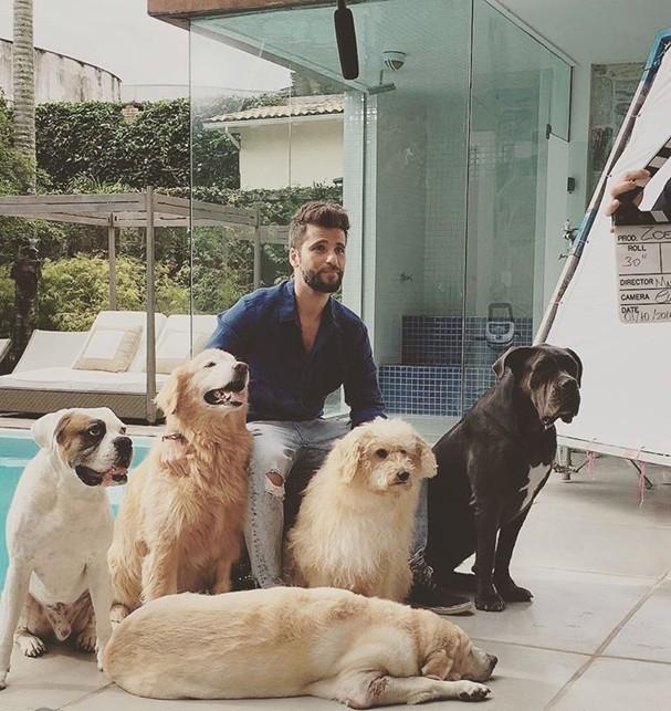 Bruno Gagliasso e seus cachorros (Foto: Reprodução/Instagram)