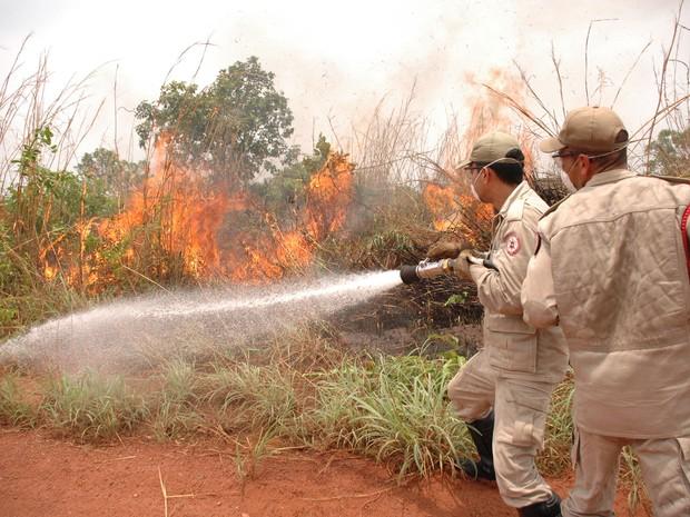 Aumento de queimadas colocam o Tocantins em segundo lugar no ranking de focos de calor (Foto: Divulgação/Bombeiros)