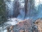 Incêndio em vegetação de Timóteo é controlado após dez horas