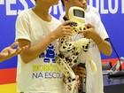 Primeiro robô humanoide do Recife é montado por estudantes