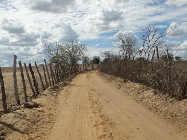 Estradas rurais de Surubim retratam situação da seca no Agreste pernambucano (Foto: Joalline Nascimento/G1)