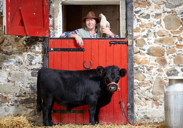 'Archie' foi recohecido como menor touro do mundo. O animal, que vive na Irlanda do Norte, mede apenas 76,2 centímetros, 38 centímetros menor do que outros touros de sua raça. (Foto: Reprodução/Guinness)