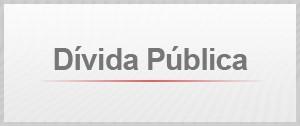 Selo Agenda Dívida Pública (Foto: Editoria de Arte/G1)