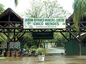 Jardim Botânico de Santos (Foto: Divulgação/Prefeitura de Santos)