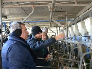 Produtores e técnicos conhecem propriedade referência em produção de leite na Argentina (Foto: Assessoria/Famato)