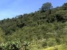 Agricultor luta para preservar parte da Mata Atlântica em Minas Gerais