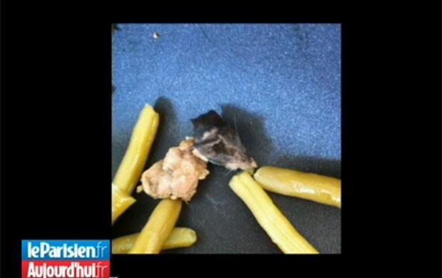 Rato foi encontrado em lata de feijões na França (Foto: Reprodução)