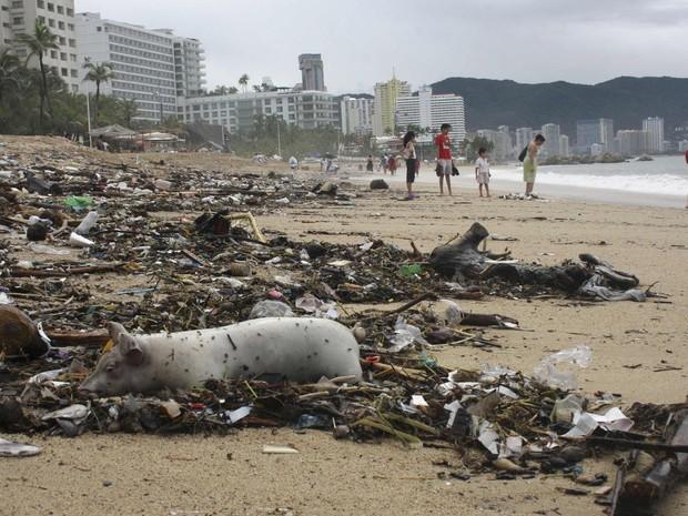 Um porco morto apareceu em meio a escombroa em uma praia em Acapulco. O México está em estado de emergência nesta terça-feira devido às chuvas torrenciais que atigem o país desde o fim de semana passada, deixando pelo menos 34 mortos. (Foto: Jacobo Garcia)