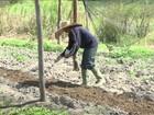 No MA, pequenos projetos ajudam a tirar as famílias da pobreza