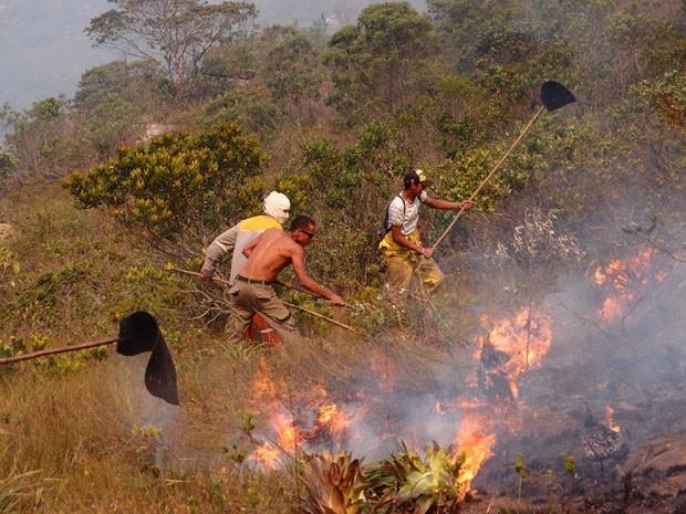 incêndio chapada diamantina bahia;  (Foto: Fabiana Carvalho/ Arquivo Pessoal)