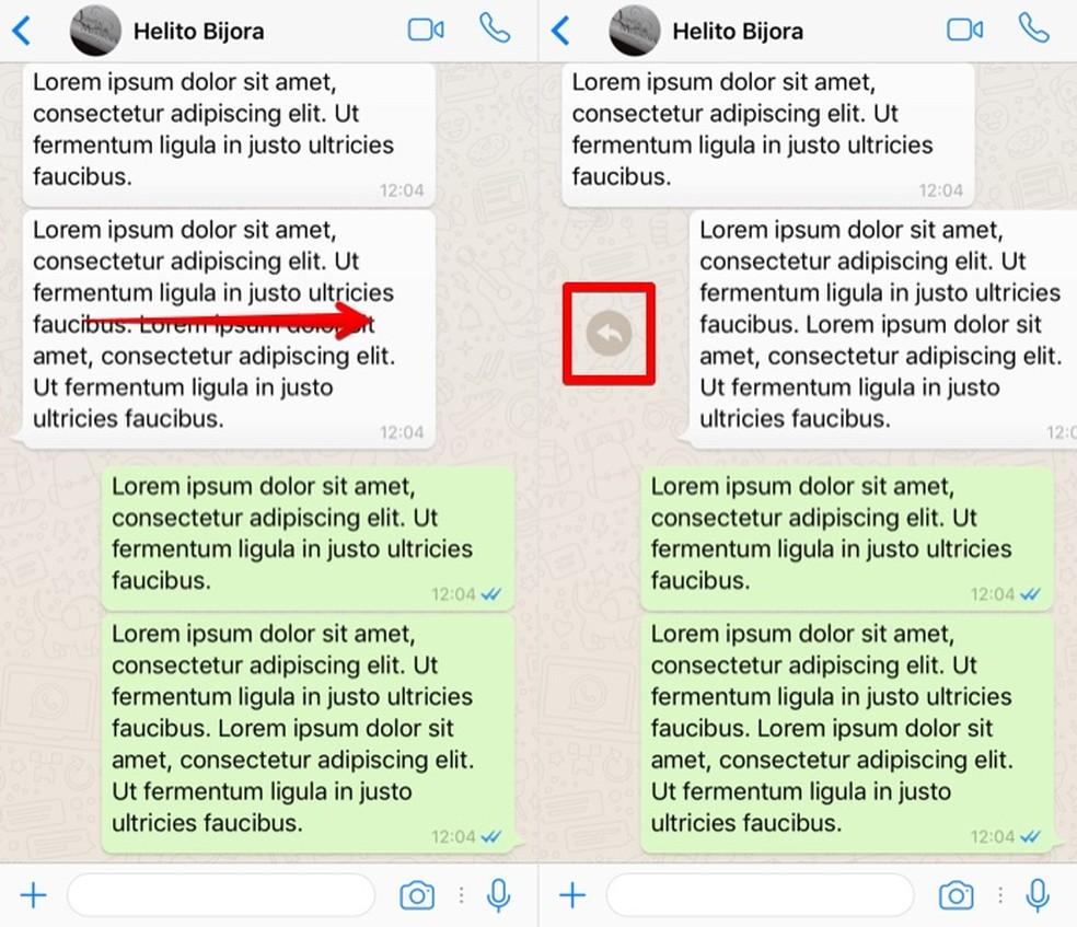 Respondendo uma mensagem no WhatsApp para iPhone (Foto: Reprodução/Helito Bijora)