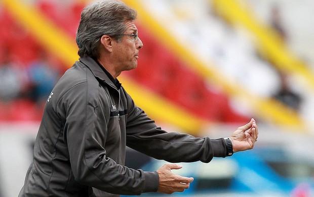 Oswaldo de Oliveira, Flamengo x Botafogo (Foto: Satiro Sodré / Agif)