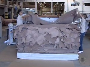Principais artigos vendidos ao mercado externo foram o couro, o açúcar, o óleo de soja e a carne vermelha (Foto: Reprodução/TV Fronteira)
