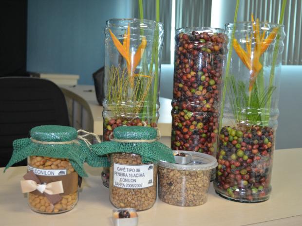 'Dia do início da colheita do café Conilon' é lançado em Cacoal, RO (Foto: Magda Oliveira/G1)