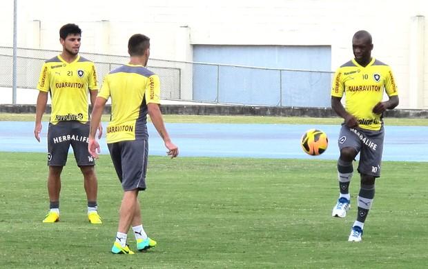 Seedorf treino do Botafogo (Foto: Thales soares)