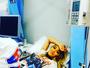Rita Ora passa mal após julgamento de ladrão que invadiu sua casa