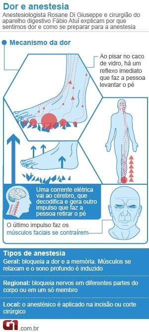 Info Anestesia e dor Bem Estar (Foto: Arte/G1)