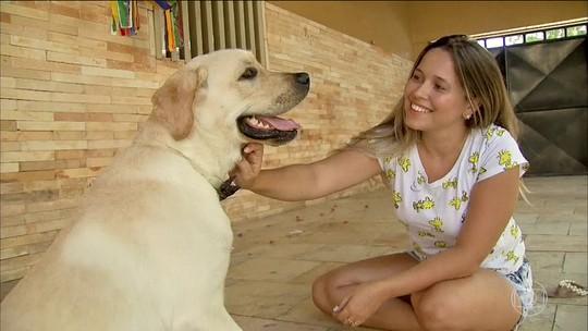Ter um cachorro diminui o risco cardíaco, diz Associação Americana