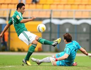 Palmeiras x Santos (Foto: Marcos Ribolli)