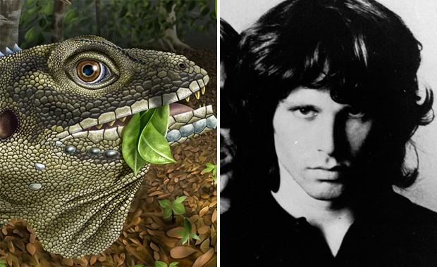 Concepção artística mostra como seria o lagarto 'Barbaturex morrisoni', à esquerda; à direita, o cantor Jim Morrison (Foto: Divulgação/Angie Fox/Universidade de Nebraska-Lincoln/Arquivo/AP)