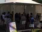 'Adota Valinhos' faz feira de adoção de cães e gatos na 67ª Festa do Figo