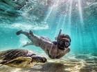 Amanda Richter exibe boa forma ao mergulhar com tartaruga em Noronha