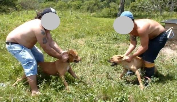 Homens aparecem em foto com cães na propriedade (Foto: Divulgação/Polícia Civil)