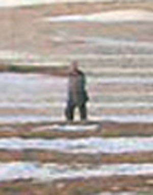 'Soldado-fantasma' aparece com transparência, de acordo com o especialista André Jung, com linhas do terreno ao fundo transpassando-o (Foto: AFP/KCNA)