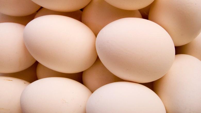 ovos-aves-granja (Foto: J P Davidson/CCommons)