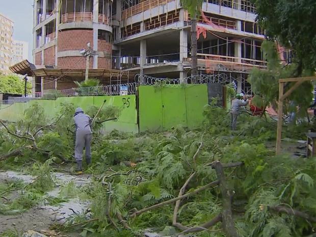Queda de árvores prejudicam o acesso aos hospitais  (Foto: Reprodução / RBS TV)