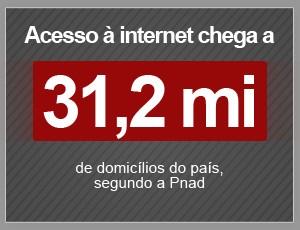 Acesso à internet chega a 31,2 milhões de domicílios (Foto: G1)